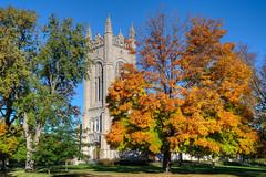 Fall Campus 3s (Greg Riekens) Tags: northfield usa carlton fallcolors tree nikond500 skinnermemorialchapel campus minnesota autumn midwest fall carltoncollege chapel