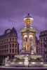 Lyon, Place des Jacobins (Oleg S .) Tags: water france lyon lighting flickr fountain night