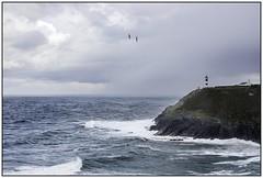 Ortiguera. COAÑA (Germán Yanes) Tags: asturias marinas ortigueira españa spain mar sea coaña faro