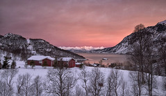 A Trick of the Light (Tracey Whitefoot) Tags: approved 2018 tracey whitefoot norway nordland e10 winter january arctic twilight sunrise snow cold snowfall warm tones pink