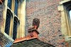 Lion holding Fish Court (zawtowers) Tags: hampton court palace east molesey surrey henry viii historic royal residence saturday february 17th sunny dry visit henryviiikitchens kitchens large scale cooking era lion statue overlooking entrance fish