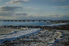 The Siberian freeze in Öresund ( 2) (frankmh) Tags: cold ice snow winter sea water öresund larös helsingborg skåne sweden outdoor seascape landscape
