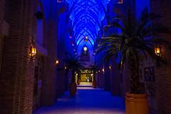 201508201844598163.jpg (Peter_069) Tags: dubai burjkhalifa night nacht burj khalifa emirates arabischeemirate arabia hochhaus turm wolkenkratzer skyscraper sky tower dessert wüste sand sonne sun hitze palm palme burjalarab hotel luxus luxury