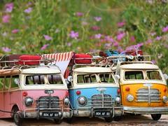 """Flower-power-travel-buses"" (libra1054) Tags: bus cars automobili autos"