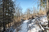 Dalewood Conservation Area (blergh.) Tags: nikon d600 st thomas ontario canada nature outdoors hiking