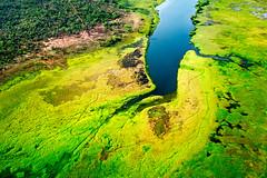 The Wetlands (Hervé Amiot) Tags: hervéamiot sonynex6 australie australia northernterritory kakadunationalpark planeview arnhemland wetland aboriginal green