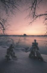 118 (petrisalonen) Tags: river vuoksi finland nature winter frozen freezing ice snow trees sunshine sunrise yellow eos canon red sky longexposure slowshutterspeed