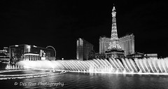 Las Vegas Fountain Show (PhotoDG) Tags: lasvegas fountain show casino street nightscape night neon light water music blackandwhite monochrome vegasstrip nevada usa cityscape landmark ballys hotel 拉斯维加斯