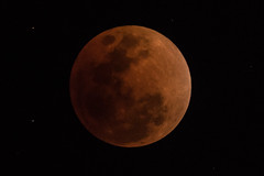 Lunar eclipse, 31/Jan/2018, Tokyo (kuyu-peach) Tags: 2018 dslr fx fullframe lunareclipse moon night nikond750 sky tamron150600 tamronsp150600mmf563divcusd tokyo
