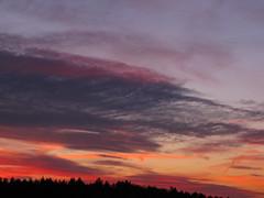 ....intense..... (elisabeth.mcghee) Tags: abendhimmel abendrot sunset wolken himmel sky clouds yellow red purple gelb rot lila blau blue