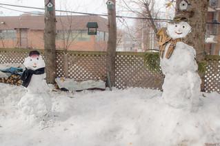 Bonhommes de neige, Québec, Canada - 4859