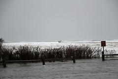 Storm Surge Flooding (MaggieDu) Tags: flood ocean water 142018northeaster storm winter stormsurge greysbeach yarmouthport capecod massachusetts boardwalk