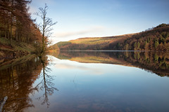 The calm after my storm (G-WWBB) Tags: derwent derwentreservoir reservoir peakdistrict peaks hopevalley reflections reflect reflecting waterfront water waterside trees nature landscape colours