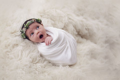 Jude 13th January (Carli Nicole Photography) Tags: newborn newbornphotography newbornsession newbornlifestyle babyphotography baby siblings professional naturallight naturalbeauty naturallighting natural lifestylephotography lifestyle babies