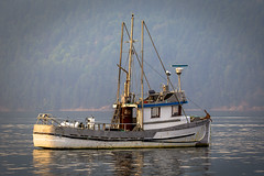 Aura Lee (Paul Rioux) Tags: marine fishing fish boat vessel ship commercial old classic trawler decay auralee cowichan bay bc calm water reflection prioux tranquil ocean sea outdoors