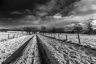 Leading Lines_G5A5893