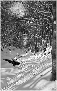 Winter Scenery near les Aravis (Savoie)