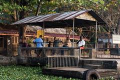 Kerala (claudia hebuterne) Tags: kerala india trip adventure wild nature water