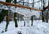 Ice details (Dumby) Tags: ice ilfov românia winter iarnă deatails closeup vaduanei brănești lx3 panasonic macro