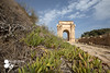 lebda city (Azaga ツ) Tags: effects lupus great lambda libya alkhoms city civilization the libyan coast green sky الخمس مدينة لبدة الاثرية ليبيا الساحل الليبي اخضر