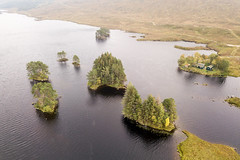 Scots Pines in Loch Ossian (Joe Dunckley) Tags: britain british corrour greatbritain highland highlands islands lochossian lochaber rannochmoor scotland scotspine scottish scottishhighlands uk unitedkingdom westhighlands aerialview birdseyeview conifer coniferous coniferoustree droneshot fromabove island lake loch nature pinetree summer tree trees water