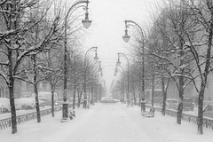 Blank (rsvatox) Tags: saintpetersburg snowfall winter blackandwhite street nocolor urban city boulevard monochome weather blacknwhite streephotography