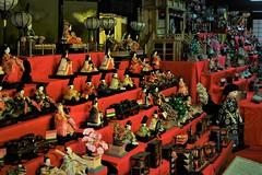 ✪犬山城下町の雛飾り② 愛知県犬山市 (m-miki) Tags: nikon d610 japan 愛知 犬山 城下町 雛人形 ひな祭り aichi inuyama castle town hina dolls matsuri