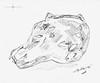 Porco - Umano (Pig - Human) - Artist:  Leon 47 ( Leon XLVII ) (leon 47) Tags: porco umano pig human leon 47 xlvii disegno drawing