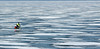 ice bike close (kerwilliger) Tags: lake mendota frozen ice winter january madison wisconsin snow bike