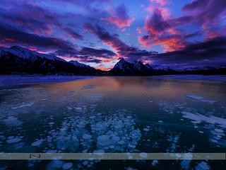Abraham Lake