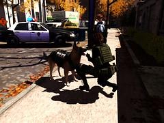 Racoon City (ღ:Yuzღ:) Tags: secondlife fashion argrace racooncity d1mtg tonktastic sisu sac epia combat biohazard hive animal dog
