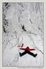 neve-alberi-foglie-Paolo-Maggiani-Photos-D61018P_MAG7914 (Paolo_Maggiani) Tags: neve snow mountain montagna apennino cerreto cerretolaghi massacarrara toscana emilia reggioemilia red white ice ghiaccio freddo cold winter inverno italy