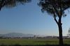 Pisa dalla SS1 (Alberto Cameroni) Tags: pisa torrependente battistero leica leicaxtyp113