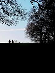 Simple Pleasures (S Clark) Tags: simplepleasures plumstead southeastlondon parklife parks londonparks london londonist trees winter peoplewatching people openair canon canonpowershotg12 se18 seaside sei8stories shrewsburypark shootershill