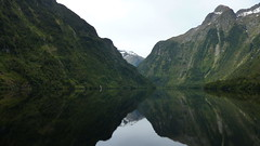 Obvious Silence in Doubtful Sound (Eye of Brice Retailleau) Tags: angle beauty composition landscape nature outdoor panorama paysage perspective scenery scenic view extérieur ciel sky backpacking earth mountain mountains travel vista reflection reflet mirror clouds light cloudscape water waterscape lake eau montagne lac calme dark fjord new zealand kiwi doubtful sound