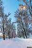 Dillners Avenue 1 (kentkirjonen) Tags: canon 80d old gammal sweden sverige dalarna ue wood trä minesite gruvområde snow snö lights lampor allé avenue grängesberg