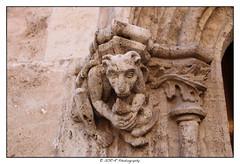 2018.02.03 La Lonja 21 (garyroustan) Tags: valencia valence spain espagne espada lonja architecture gothic gothique