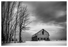 _DSC3976-Mr (gillesporlier) Tags: horizon grange barn monochrome bw nb blackandwhite nikon tree arbre noiretblanc old