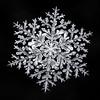 Snowflake-a-Day No. 33 (Don Komarechka) Tags: snowflake snow flake ice crystal fractal symmetry nature macro physics focusstacking winter frozen balance meteorology mineral water mpe