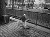 eau potable (8pl) Tags: bw parc bihać ville barrière arbre poubelle fontaine pitnavoda pavé pelouse