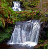 Fairlie Waters (wheehamx) Tags: waterfall fairlie ayrshire