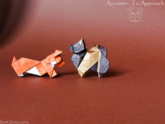 Accoster - To Approach. (Magic Fingaz) Tags: anjing barthdunkan chien chó dog hond hund köpek origami perro pies пас пес собака หมา 개 犬 狗