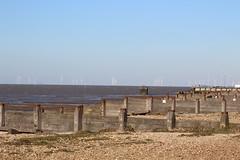 IMG_6934 (cindyincidentally) Tags: whitstable kent kentcoast britishbeach seaside seashore seasidetown