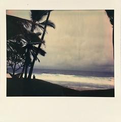 Summer mood. (miroir.photographie) Tags: instant argentique istillshootfilm filmisnotdead analog neworiginals spectrapro polaroidoriginals polaroidspectra polaroid
