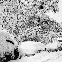 Снежное одеяло / Snow Blanket (Yuri Balanov) Tags: winter urban lanscape moscow russia bw monochrome car snowfall pentax pentaxk5iis city citywinter