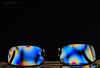 polarised plastic specs (sure2talk) Tags: polarisedplasticspecs polarised plastic glasses specs plasticlenses colours nikond7000 tamron18270mmf3563dillvcpzd polarizingfilter experimental closeup