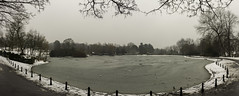 Saltwell Park (lksmalaga) Tags: saltwell park gateshead uk gb tyne wear ice frost frozen lake lago helado hielo frio cold