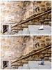 Serendipity (Crosshatchs) Tags: serendipity bird black white stairs diptych quote einstein albert 18 nikon time space frame