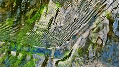 """the shape of water"" - a forma da água (AnaValle) Tags: água geometria limpidez reflexos algas forma rio pattern fenómeno"