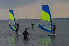 Teacher and students (frankmh) Tags: windsurfing windsurfer teaching pupil hittarp skåne sweden student water sea öresund denmark outdoor